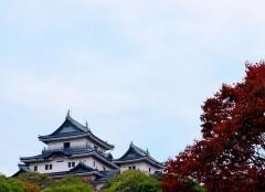 \和歌山市松江東から、半径約50キロ圏内を中心に活動中/